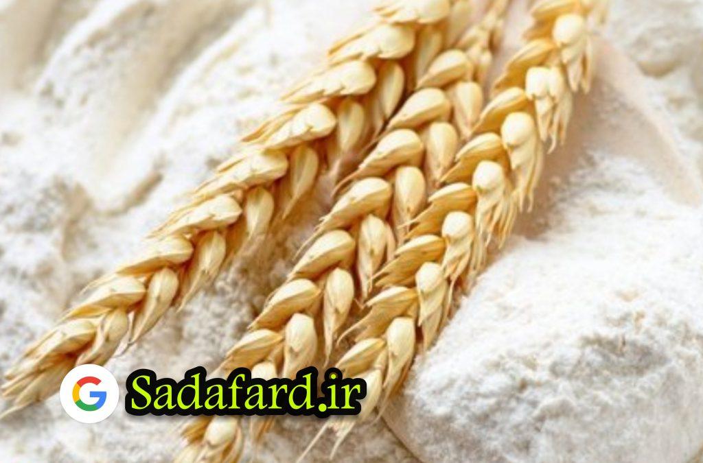 صادرات آرد چیست؟ و به چه صورت در کشور های مختلف انجام می شود؟