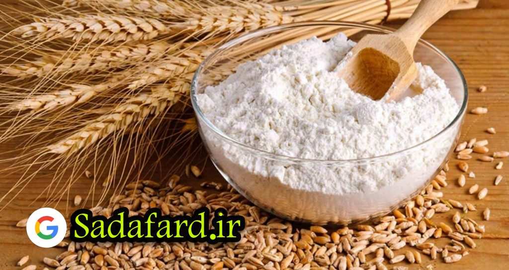 مجری طرح گندم وزارت جهاد کشاورزی گفت: وضعیت تولید گندم در کشور خیلی خوب است.