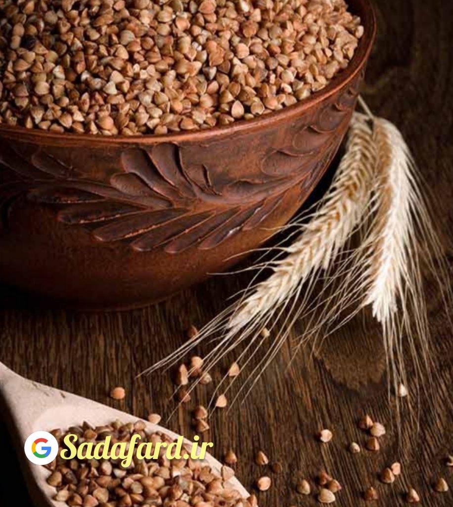 گندم سیاه گزینه مناسبی برای مدیریت وزن